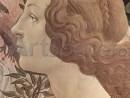 11_00877-130x98 Nasterea Venerei - Sandro Botticelli